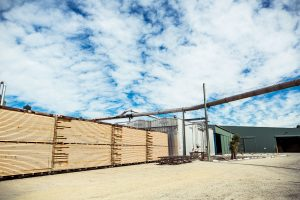 Bán gỗ thông xẻ tại Hồ Chí Minh. Liên hệ Mr Phong 0982631199